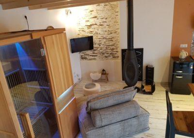 séjour composé de sauna, canapé, télévision et pôele à bois